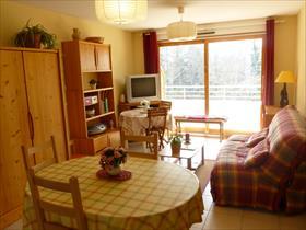 Appartement - ST BONNET EN CHAMPSAUR - Coquet T2 MEUBLE+cave, proche village